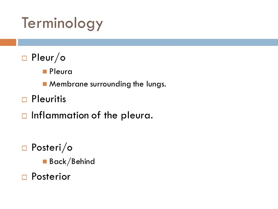 Terminology Pleur/o Pleuritis Inflammation of the pleura. Posteri/o