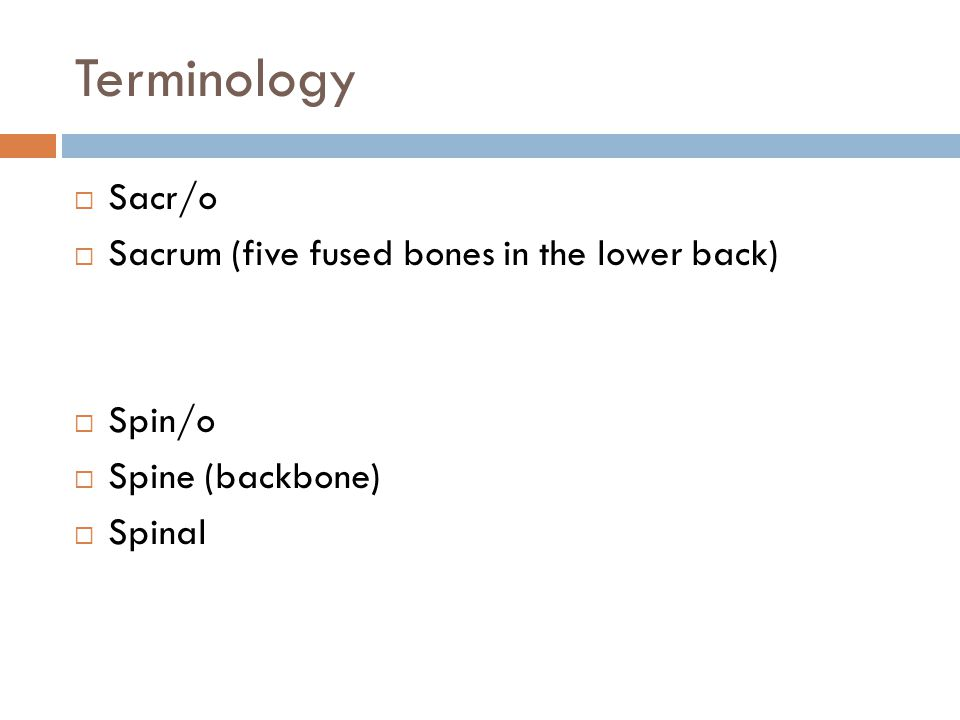 Terminology Sacr/o Sacrum (five fused bones in the lower back) Spin/o