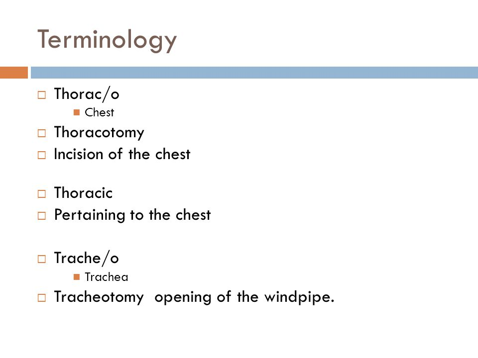 Terminology Thorac/o Thoracotomy Incision of the chest Thoracic