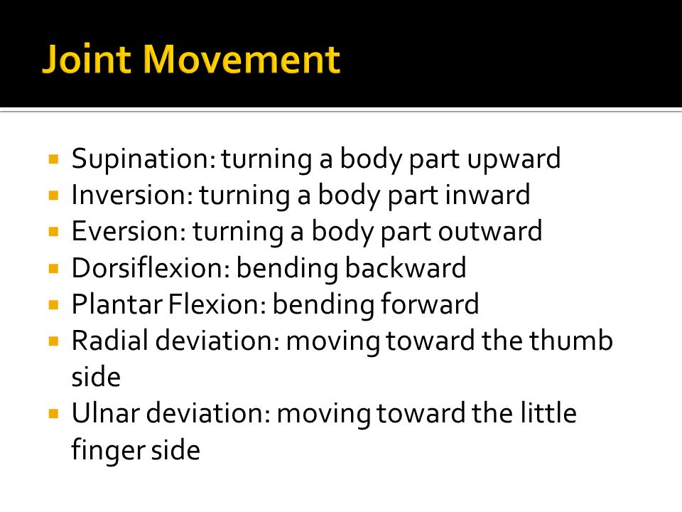 Joint Movement Supination: turning a body part upward