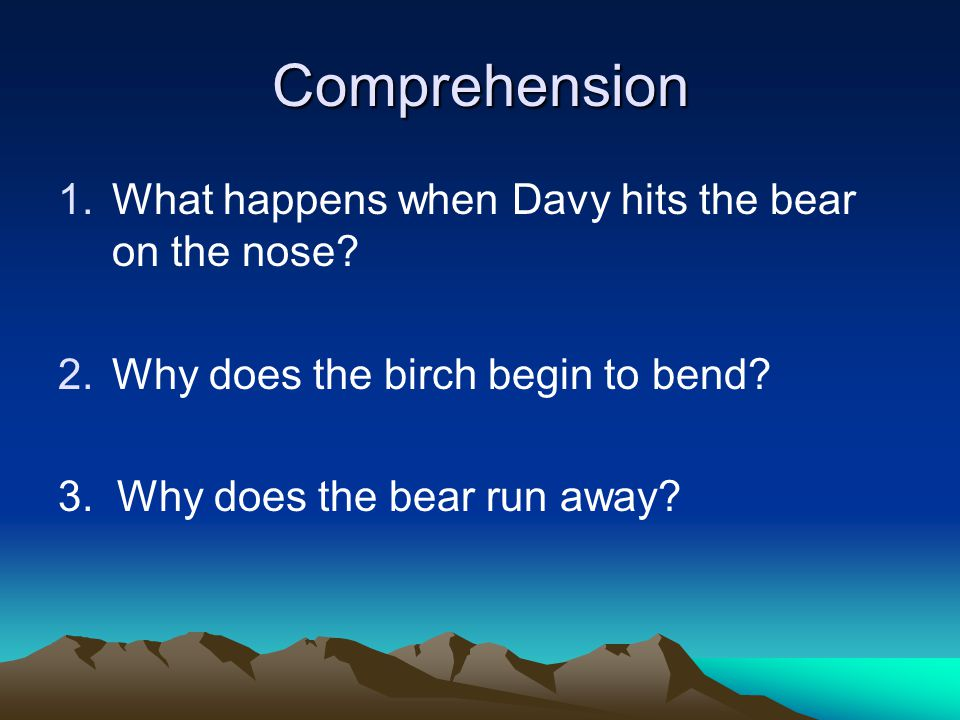 Comprehension What happens when Davy hits the bear on the nose