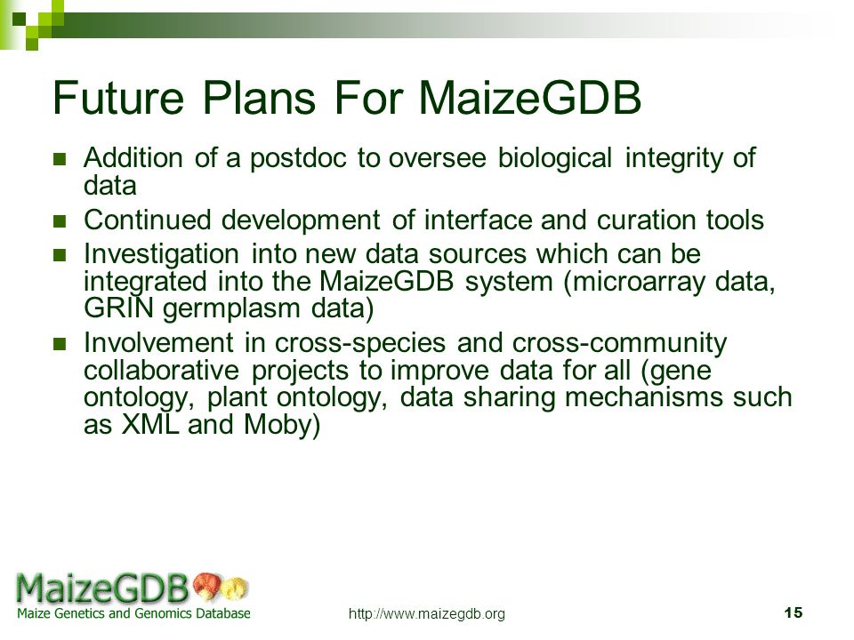 Future Plans For MaizeGDB