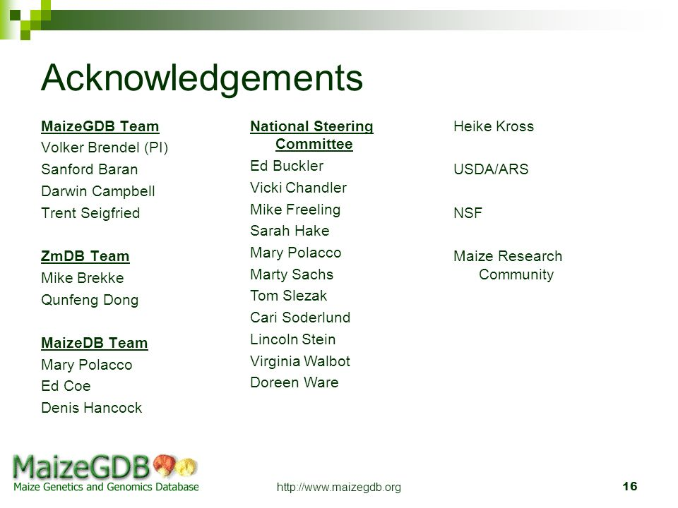 Acknowledgements MaizeGDB Team Volker Brendel (PI) Sanford Baran