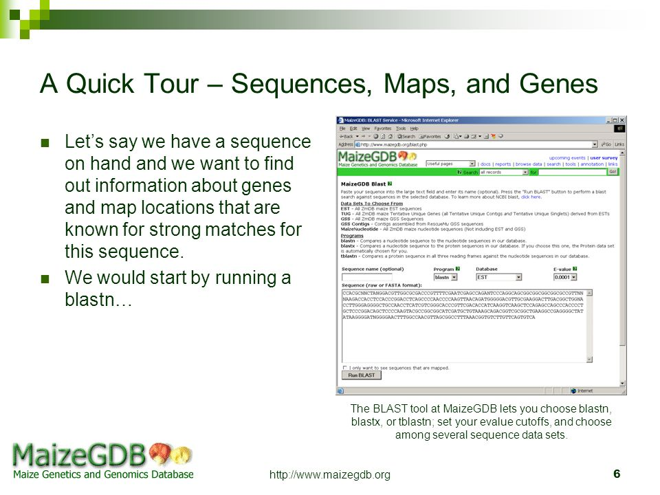A Quick Tour – Sequences, Maps, and Genes