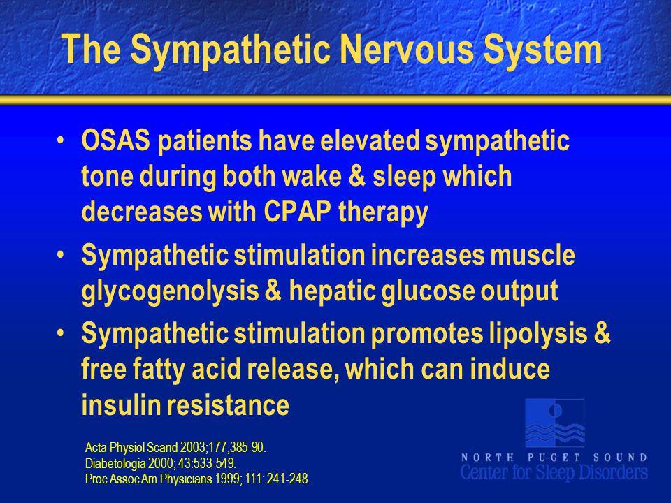 The Sympathetic Nervous System
