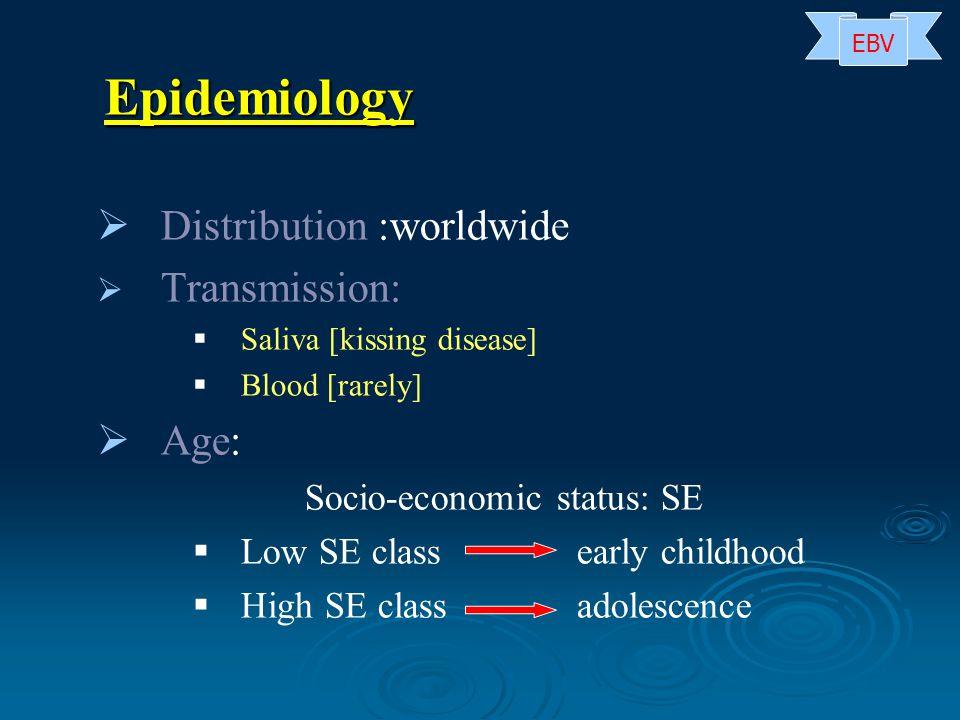 Epidemiology Distribution :worldwide Transmission: Age: