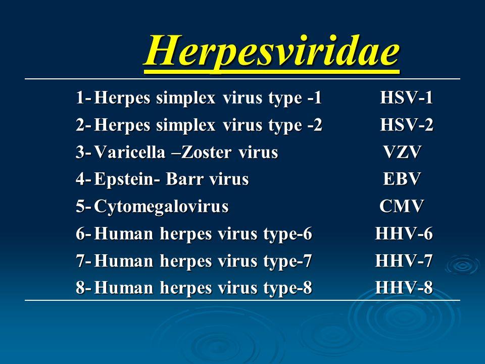 Herpesviridae 1- Herpes simplex virus type -1 HSV-1