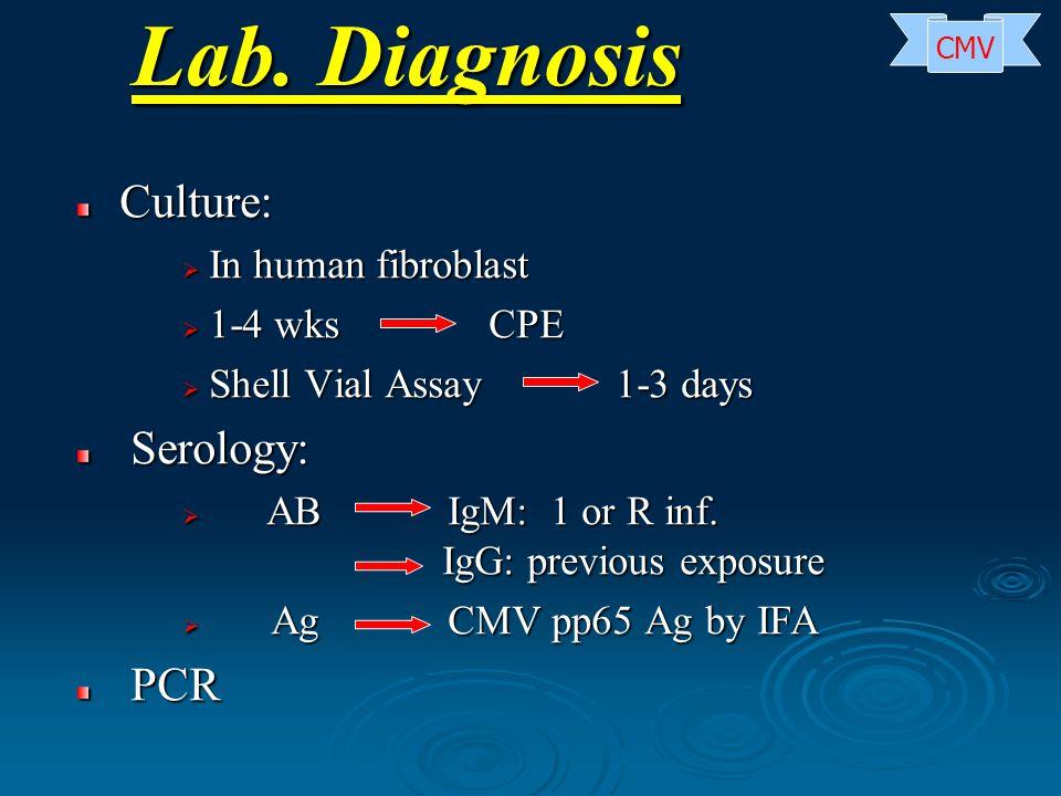 Lab. Diagnosis Culture: In human fibroblast 1-4 wks CPE