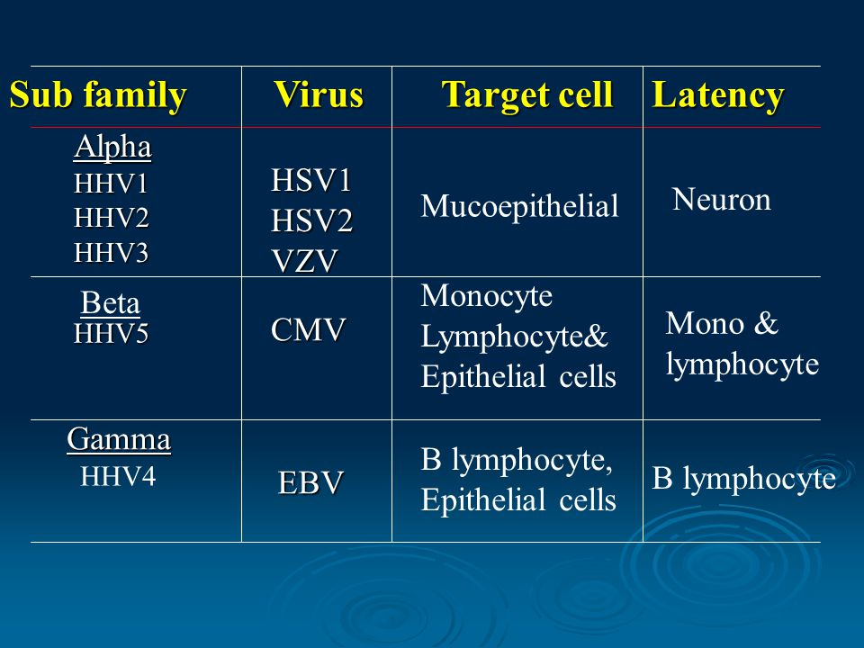 Sub family Virus Target cell Latency