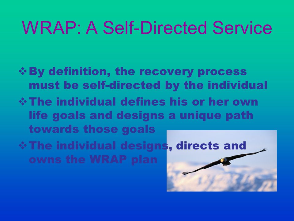 WRAP: A Self-Directed Service