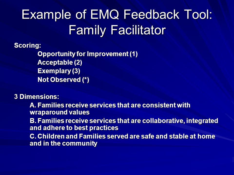 Example of EMQ Feedback Tool: Family Facilitator