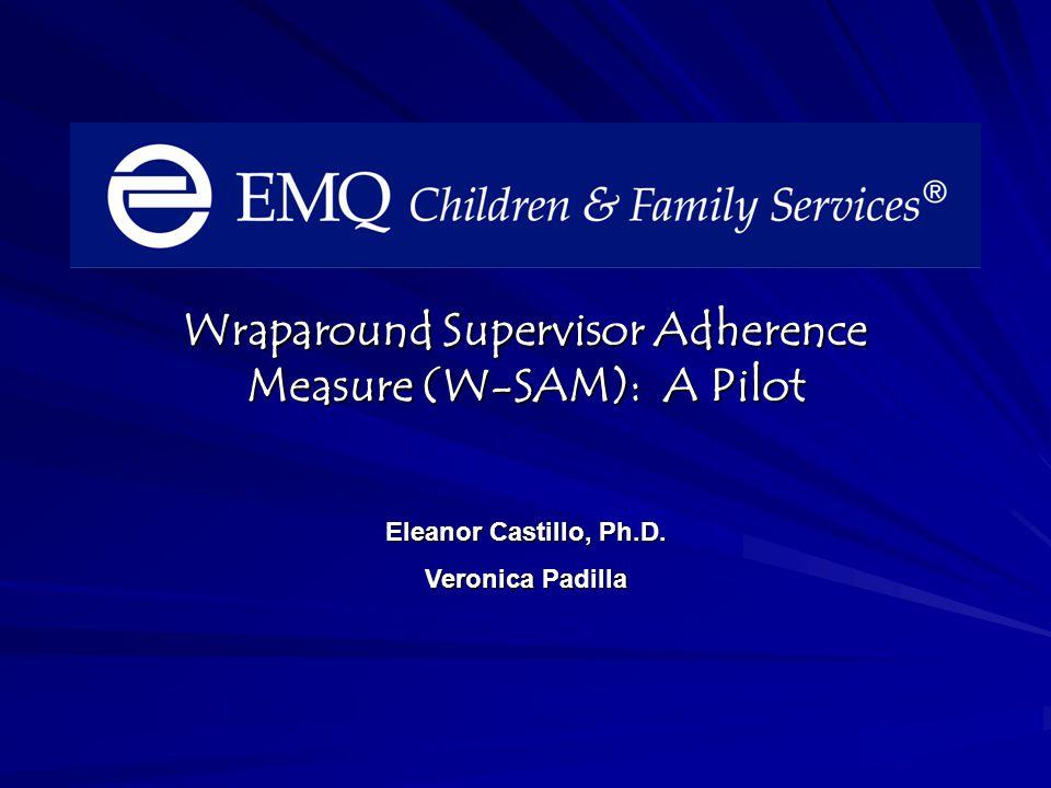 Wraparound Supervisor Adherence Measure (W-SAM): A Pilot