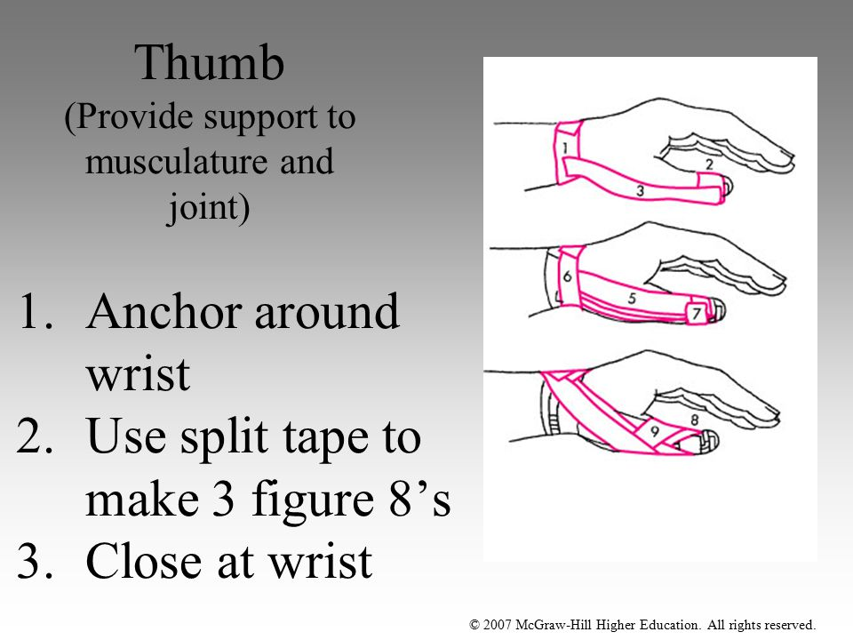Thumb (Provide support to musculature and joint)
