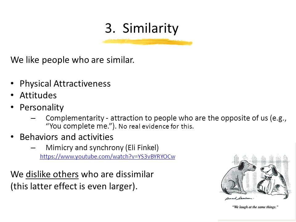 3. Similarity We like people who are similar. Physical Attractiveness