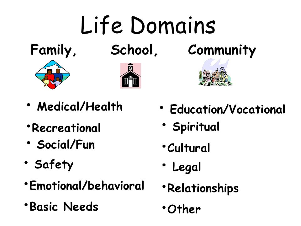 Life Domains Family, School, Community Medical/Health