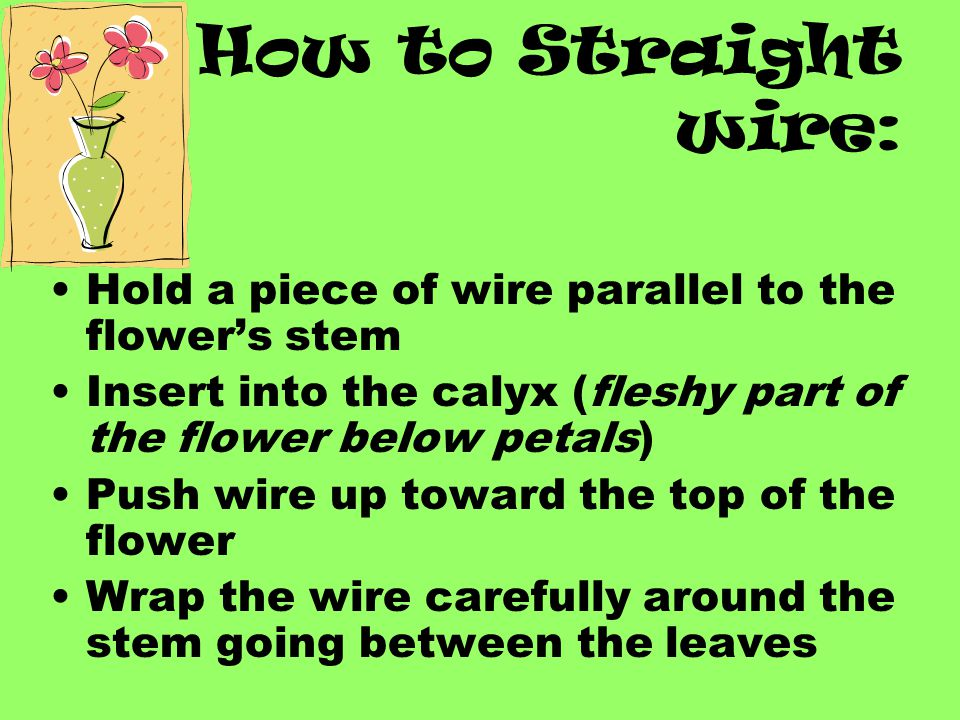 How to Straight wire: Hold a piece of wire parallel to the flower's stem. Insert into the calyx (fleshy part of the flower below petals)
