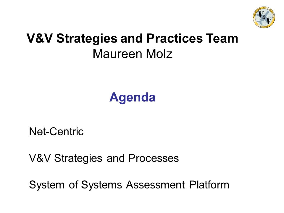 V&V Strategies and Practices Team