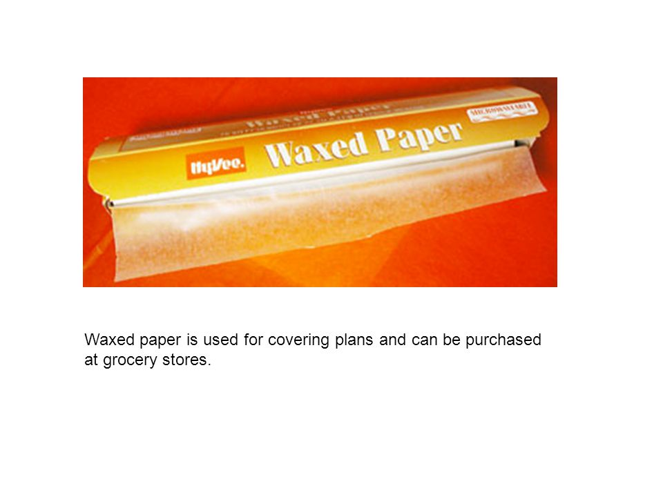 Waxed paper is used for covering plans and can be purchased at grocery stores.