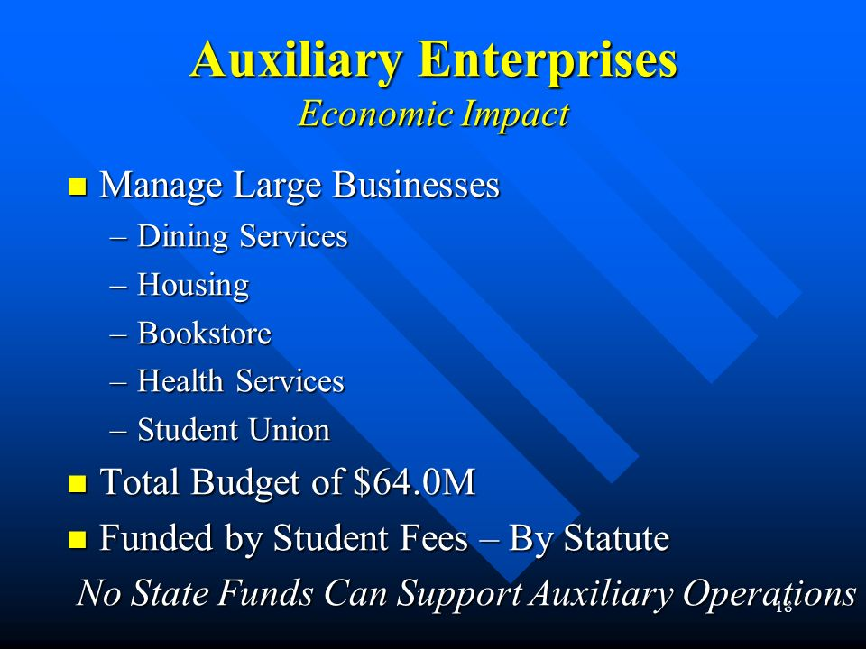Auxiliary Enterprises Economic Impact