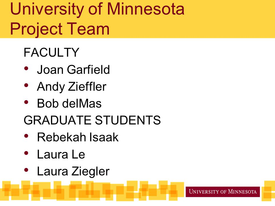 University of Minnesota Project Team
