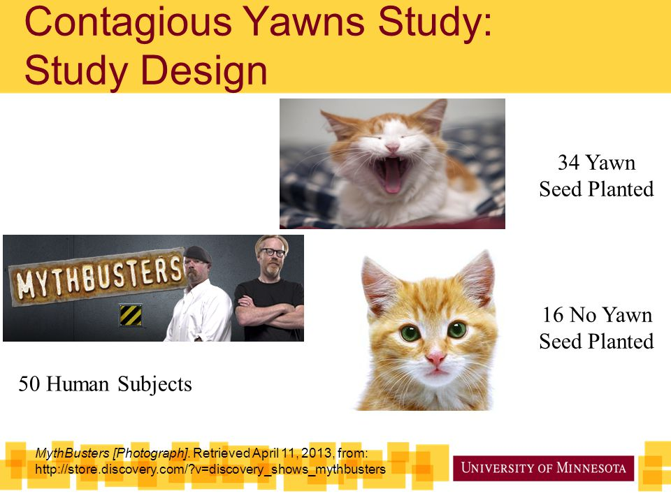 Contagious Yawns Study: Study Design