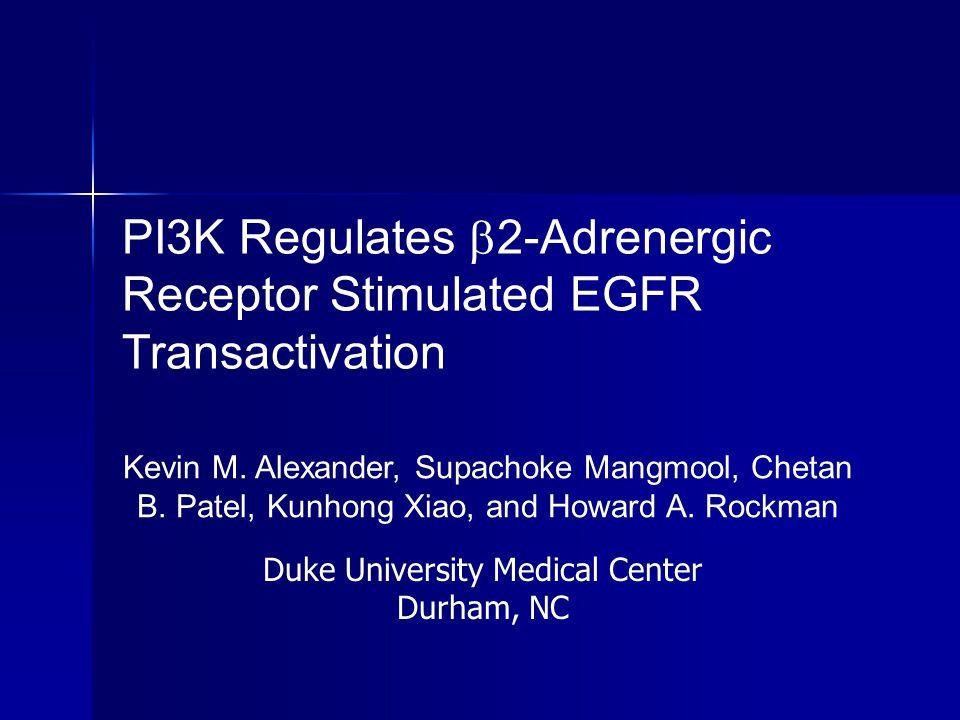 PI3K Regulates 2-Adrenergic Receptor Stimulated EGFR Transactivation
