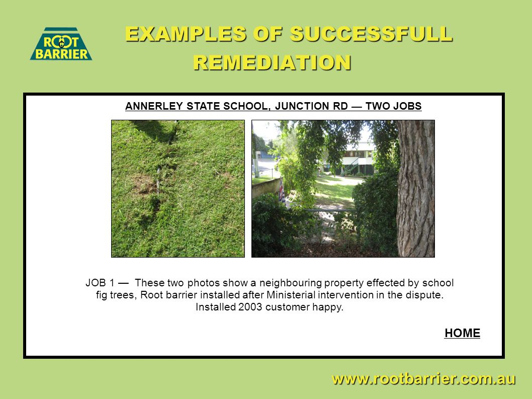 EXAMPLES OF SUCCESSFULL REMEDIATION