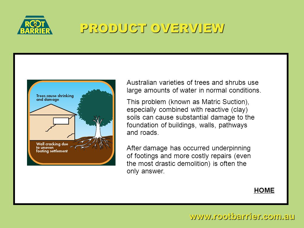 PRODUCT OVERVIEW c. Australian varieties of trees and shrubs use large amounts of water in normal conditions.