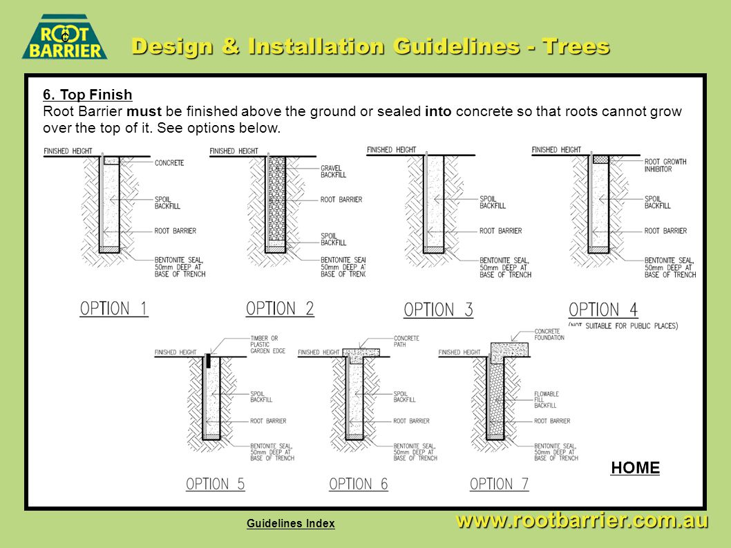 Design & Installation Guidelines - Trees