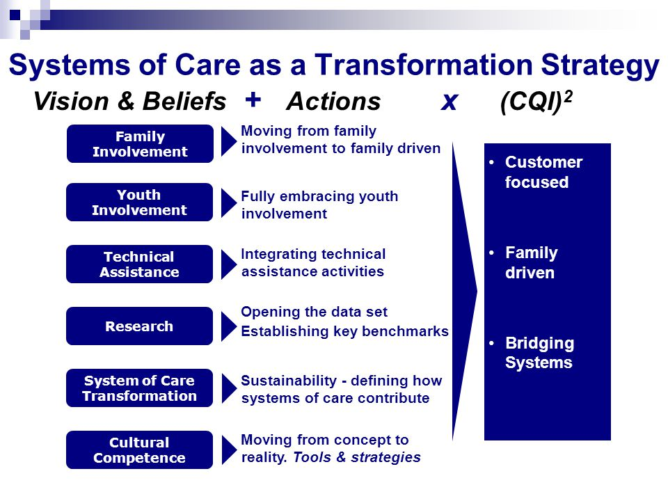 Systems of Care as a Transformation Strategy