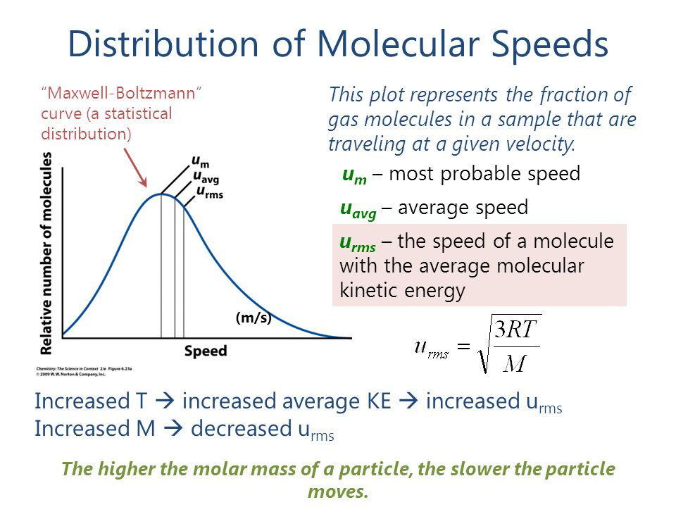 Distribution of Molecular Speeds