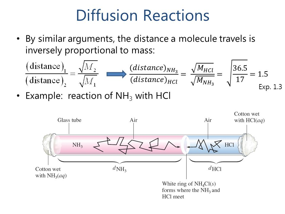 Diffusion Reactions By similar arguments, the distance a molecule travels is inversely proportional to mass: