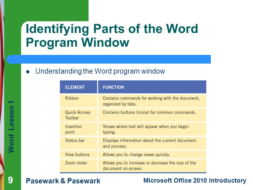 Identifying Parts of the Word Program Window
