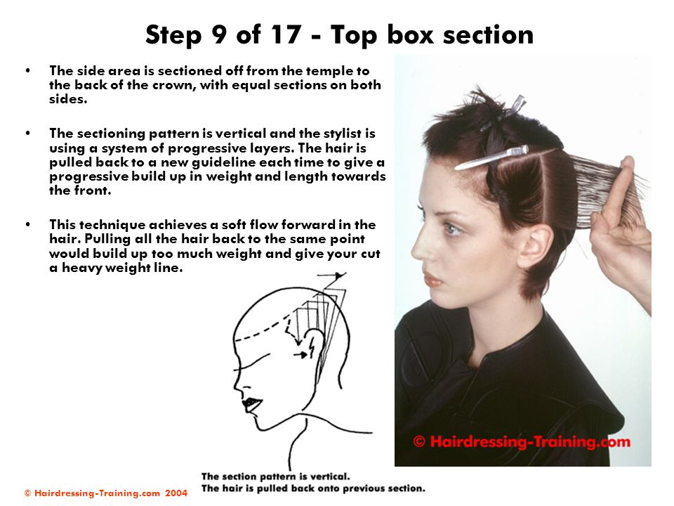 Step 9 of 17 - Top box section