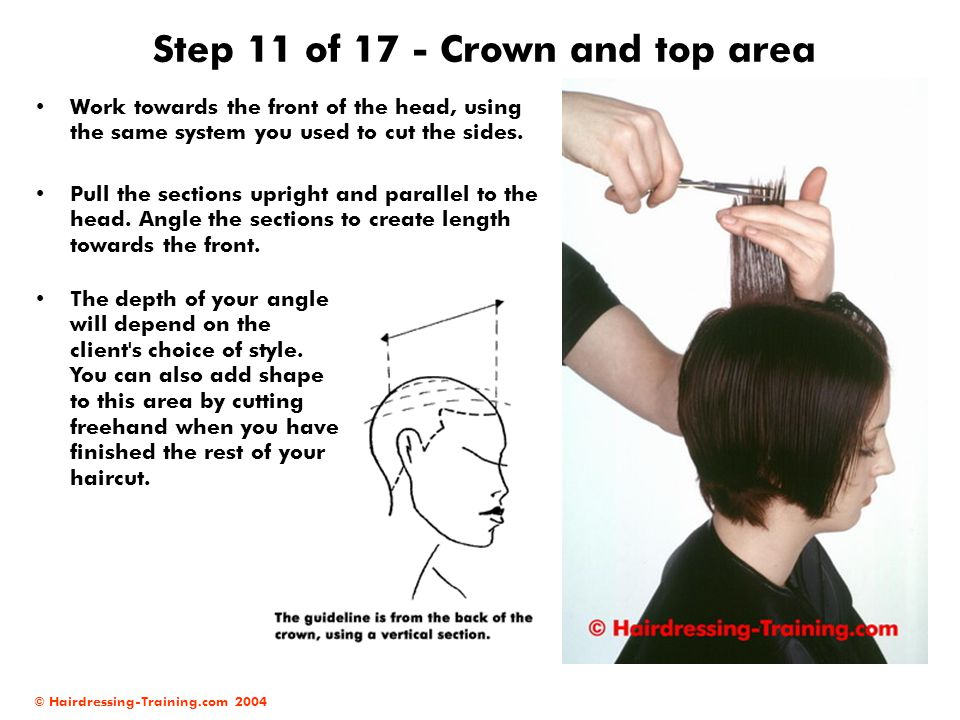 Step 11 of 17 - Crown and top area