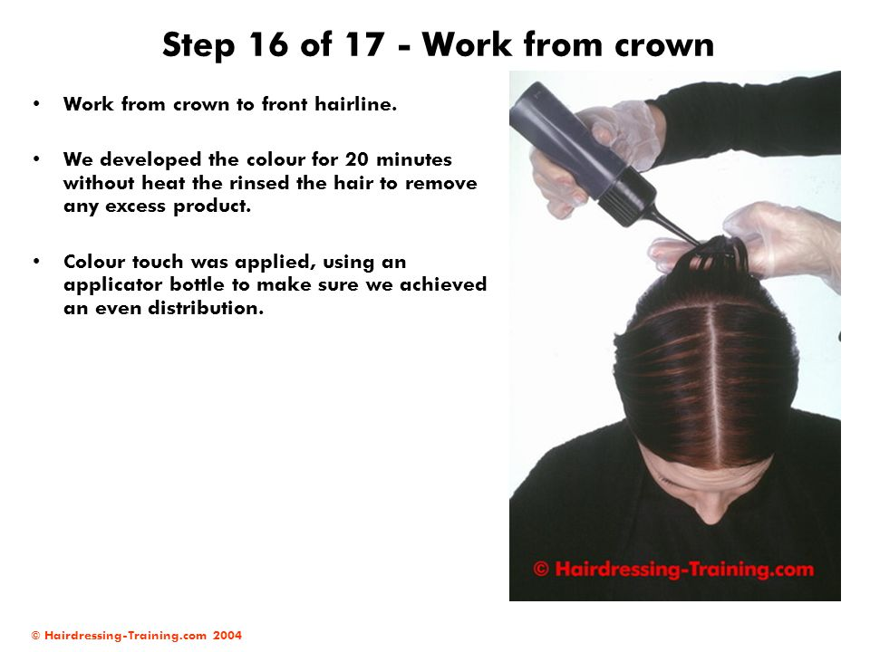 Step 16 of 17 - Work from crown
