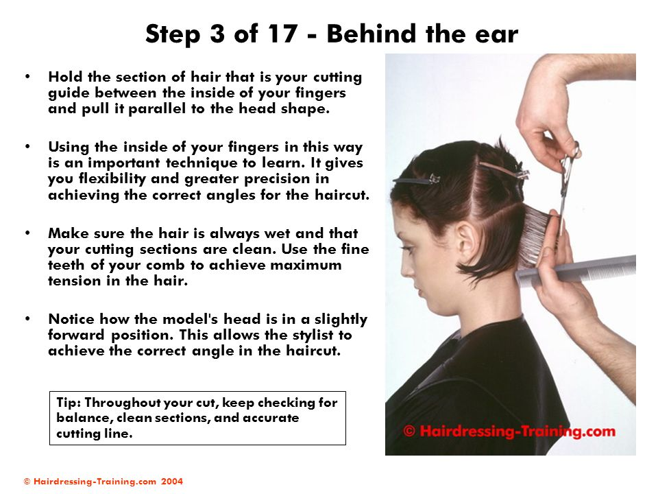Step 3 of 17 - Behind the ear