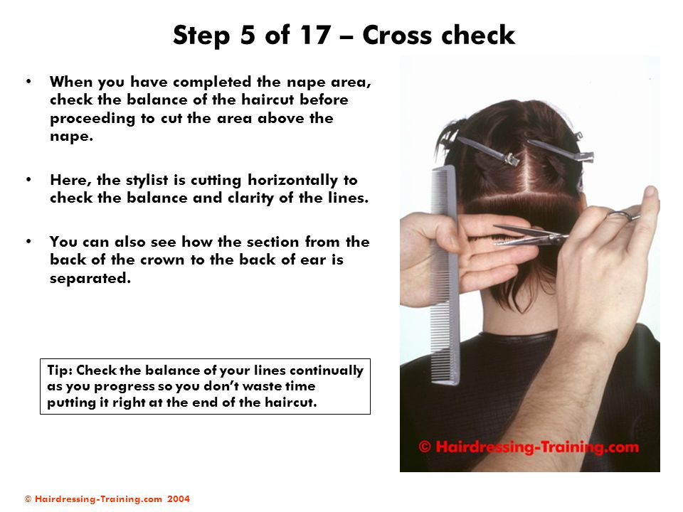 Step 5 of 17 – Cross check When you have completed the nape area, check the balance of the haircut before proceeding to cut the area above the nape.