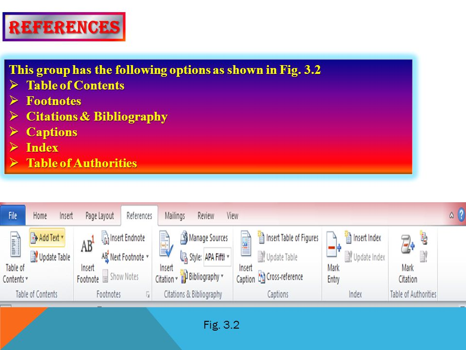 references This group has the following options as shown in Fig. 3.2