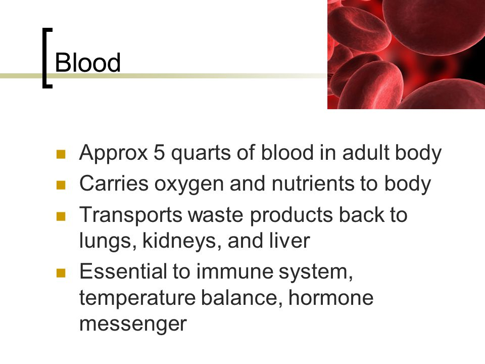 Blood Approx 5 quarts of blood in adult body