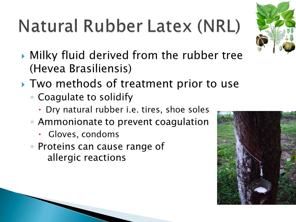 Natural Rubber Latex (NRL)