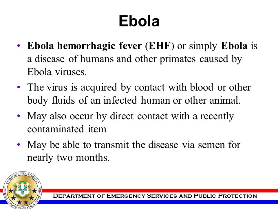 Ebola Ebola hemorrhagic fever (EHF) or simply Ebola is a disease of humans and other primates caused by Ebola viruses.