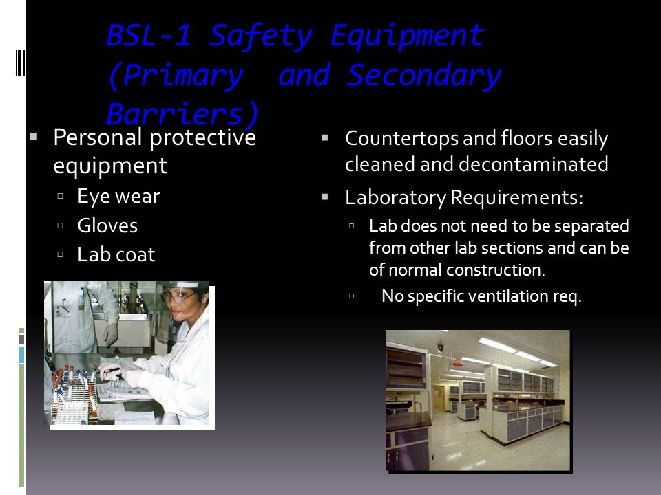 BSL-1 Safety Equipment (Primary and Secondary Barriers)