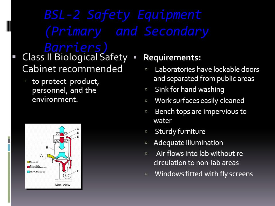 BSL-2 Safety Equipment (Primary and Secondary Barriers)