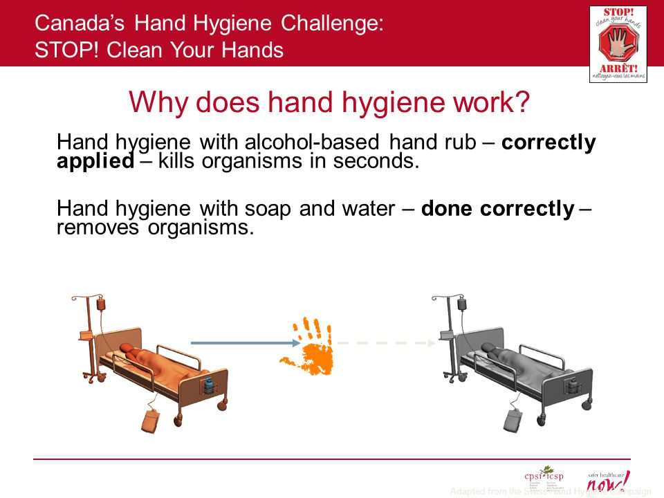 Why does hand hygiene work