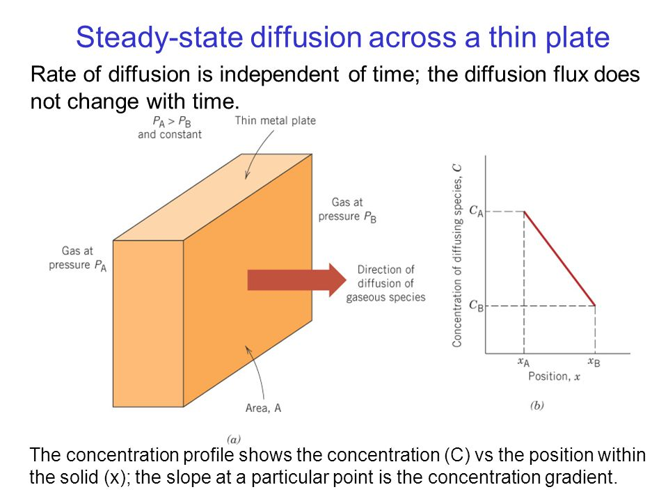 Steady-state diffusion across a thin plate
