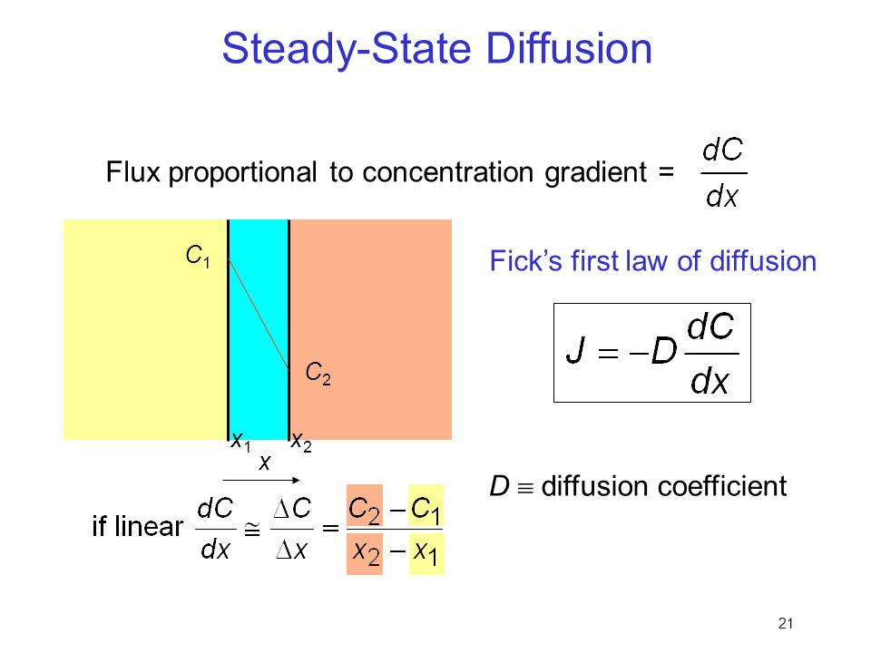 Steady-State Diffusion