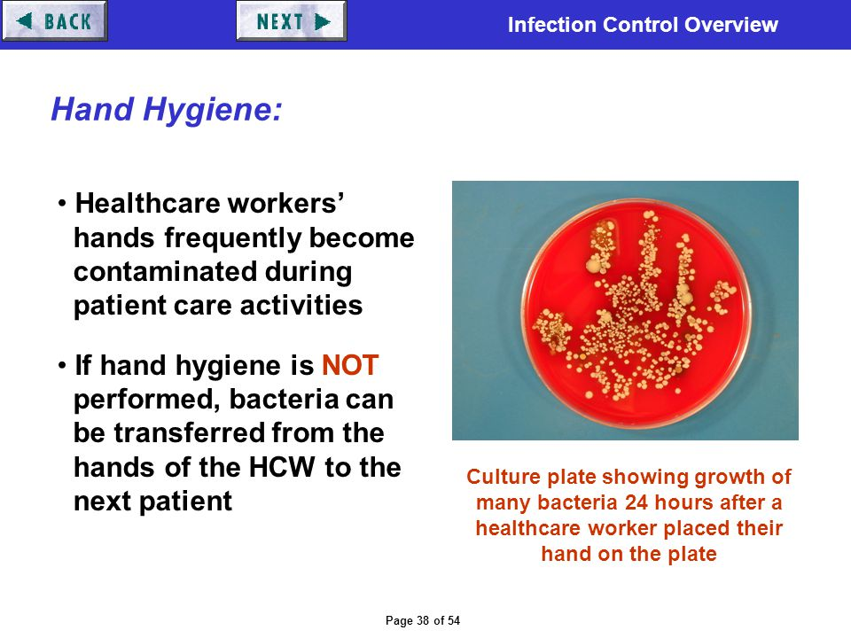 Hand Hygiene: Healthcare workers' hands frequently become