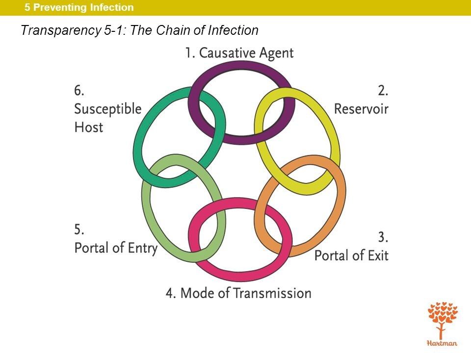 Transparency 5-1: The Chain of Infection