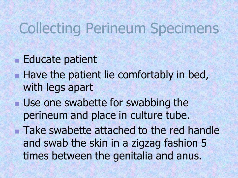 Collecting Perineum Specimens